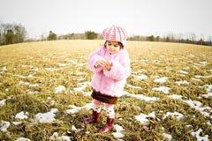 Meisje in een field4 Stock Afbeelding