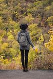Meisje in een hoed met een boeket van gele bladeren Het genieten van van de herfst bos Achtermening royalty-vrije stock afbeelding