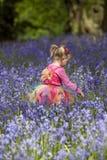 Meisje in een hout met de lenteklokjes dat wordt gevuld Royalty-vrije Stock Afbeelding