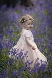 Meisje in een hout met de lenteklokjes dat wordt gevuld Royalty-vrije Stock Fotografie