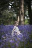 Meisje in een houten hoogtepunt van de lenteklokjes Royalty-vrije Stock Fotografie
