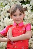 Meisje in een Japanse kleding Stock Fotografie