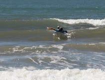Meisje in een kleuren waterdicht kostuum die in het surfen op de raad uitoefenen Royalty-vrije Stock Fotografie