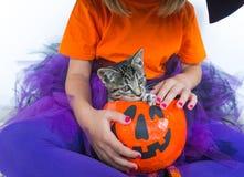 Meisje een pompoen van het heksenkostuum waarvan een katje stock fotografie