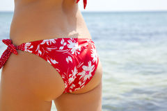 Meisje in een rode bikini op zee Stock Fotografie