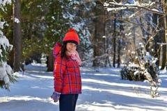 Meisje in een rode hoed voor een gang in het hout op de sneeuwwinter D royalty-vrije stock afbeelding