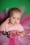 Meisje in een roze pluizige rok Stock Foto's