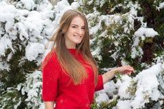 Meisje in een sweater in een sneeuwpark in de winter Stock Foto