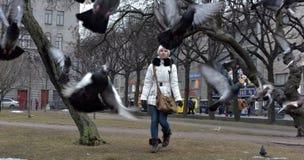 Meisje in een witte laag en een hoed een meerderheid van duif stock afbeelding