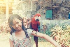 Meisje en Ara Stock Foto's