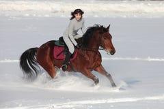Meisje en baaihengst - berijdende horseback op sneeuwgebied Royalty-vrije Stock Fotografie