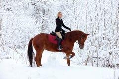Meisje en baaihengst - berijdende horseback in sneeuwval Royalty-vrije Stock Afbeelding