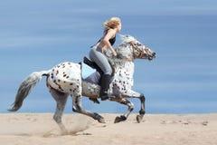 Meisje en bevlekt paard Stock Fotografie