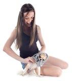Meisje en chihuahua stock afbeeldingen