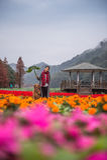 Meisje en golden retriever in de bloemen Royalty-vrije Stock Foto