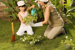 Meisje en grootmoeder het tuinieren stock foto
