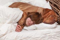 Meisje en haar hond in het bed Royalty-vrije Stock Afbeelding