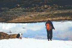 Meisje en hond op de berg Royalty-vrije Stock Afbeeldingen
