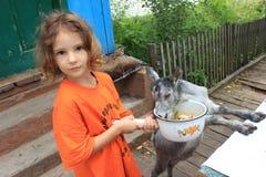 Meisje en jong geitje Stock Foto's