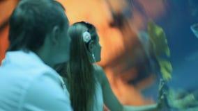 Meisje en jongens het letten op vissen in een aquarium stock videobeelden