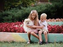 Meisje en jongens het spelen met een pluizig puppy op een achtergrond van de bloemtuin Geluk en eerlijkheidconcept Stock Afbeelding