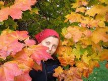 Meisje en oranje bladeren Royalty-vrije Stock Afbeeldingen