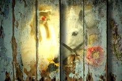 Meisje en paard houten achtergrond Royalty-vrije Stock Afbeelding