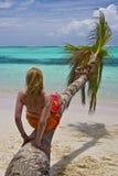 Meisje en palm Stock Afbeelding