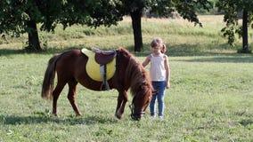 Meisje en poney stock video