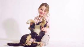 Meisje en puppy van een bernese herdershond stock videobeelden