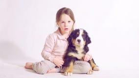 Meisje en puppy van een bernese herdershond stock video
