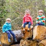 Meisje en twee jongens die samen in bos spelen stock afbeelding