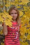 Meisje in gele esdoornbladeren Stock Foto