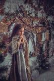 Meisje in het beeld van Cinderella royalty-vrije stock afbeelding