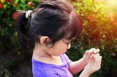 Meisje het plukken bloembloemblaadjes in de tuin royalty-vrije stock foto's