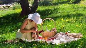 Meisje het spelen bij een picknick met haar hond stock video