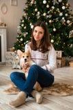 Meisje het spelen met de grappige Cardigan van puppy Welse Corgi op de achtergrond van Kerstboom en open haard stock afbeeldingen