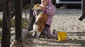Meisje het spelen met een kattenfilm stock videobeelden