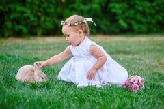 Meisje het spelen met een konijn op het gras Stock Foto's