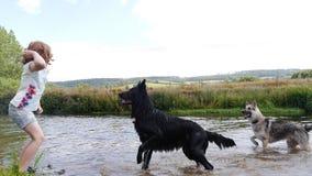 Meisje het spelen met honden door de rivier Stock Afbeeldingen