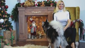 Meisje het spelen met schor zitting op de leunstoel dichtbij de open haard en de Kerstboom Speelse honden en hun eigenaar stock video