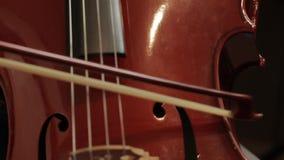 Meisje het Spelen op de Violoncel stock video