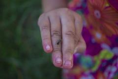 Meisje het spelen in padieveld en hebben ??n of ander insect landend op haar hand royalty-vrije stock fotografie