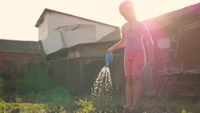 Meisje het water geven installaties in een tuin Leuke meisjetuinman met gieter stock video