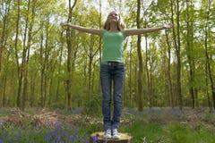 Meisje in hout Royalty-vrije Stock Afbeeldingen