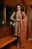 Meisje in Indische nationale kleren Stock Fotografie