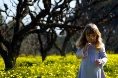 Meisje in kleurrijke weide Stock Fotografie