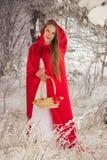 Meisje in kostuum Weinig Rode Berijdende Kap met hond zoals een wolf Royalty-vrije Stock Afbeeldingen