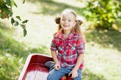 Meisje met Apple in de Apple-Boomgaard Royalty-vrije Stock Afbeelding