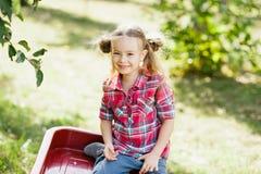 Meisje met Apple in de Apple-Boomgaard Stock Fotografie